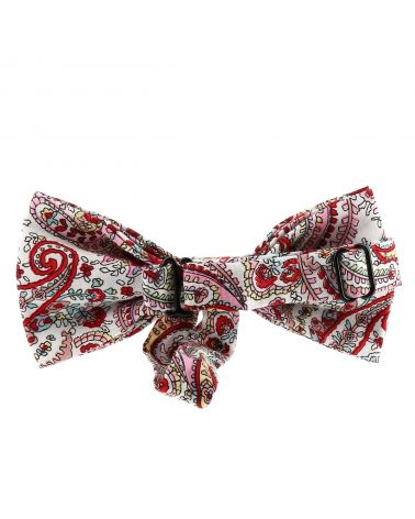 Noeud Papillon Paisley Rose